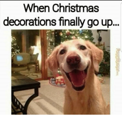 when-christmas-decorations-finally-go-up-29186929.png